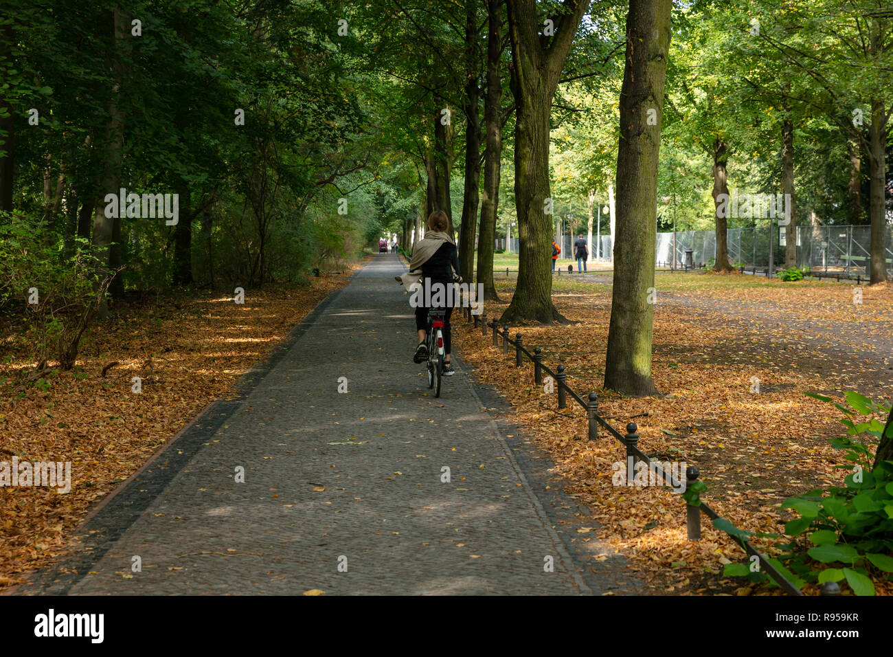 Healthy lifestyle concept at Berlin Tiergarten park. Woman is cycling on a path. Forest at autumn background. Stock Photo