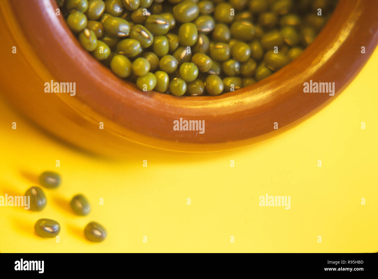 Beans, Sprouted Pulse Mung (Moong daal), India - Stock Image