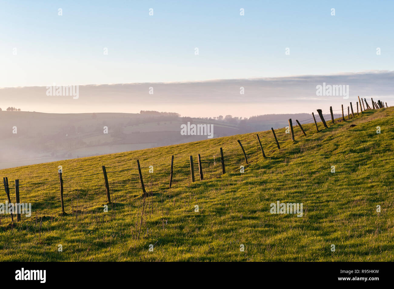 Powys, UK, winter. On Stonewall Hill in the border country between England and Wales. - Stock Image