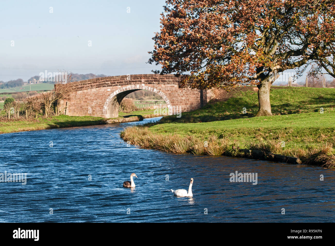 A view of the Leeds Liverpool canal, with Houghton Tower in the background - Stock Image