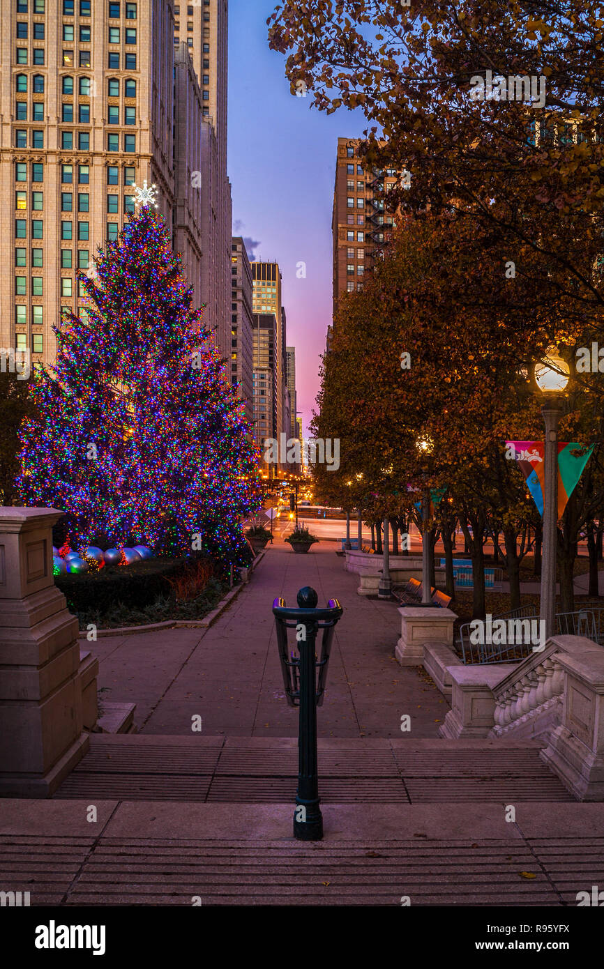 Christmas Tree Downtown Chicago.Christmas Tree In Millennium Park In Downtown Chicago Stock