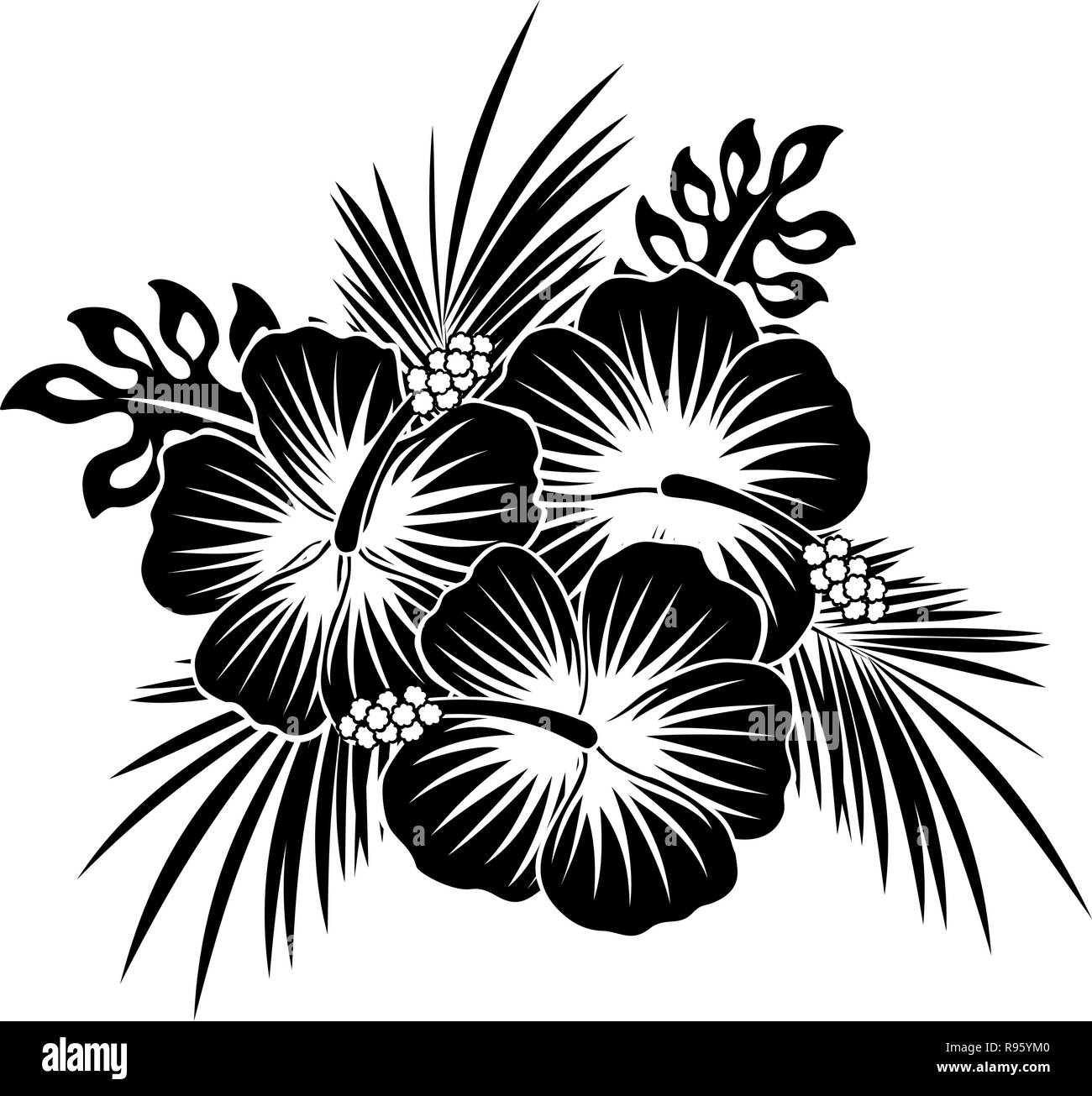 Hibiscus Flowers Black And White Stock Photos Images Alamy