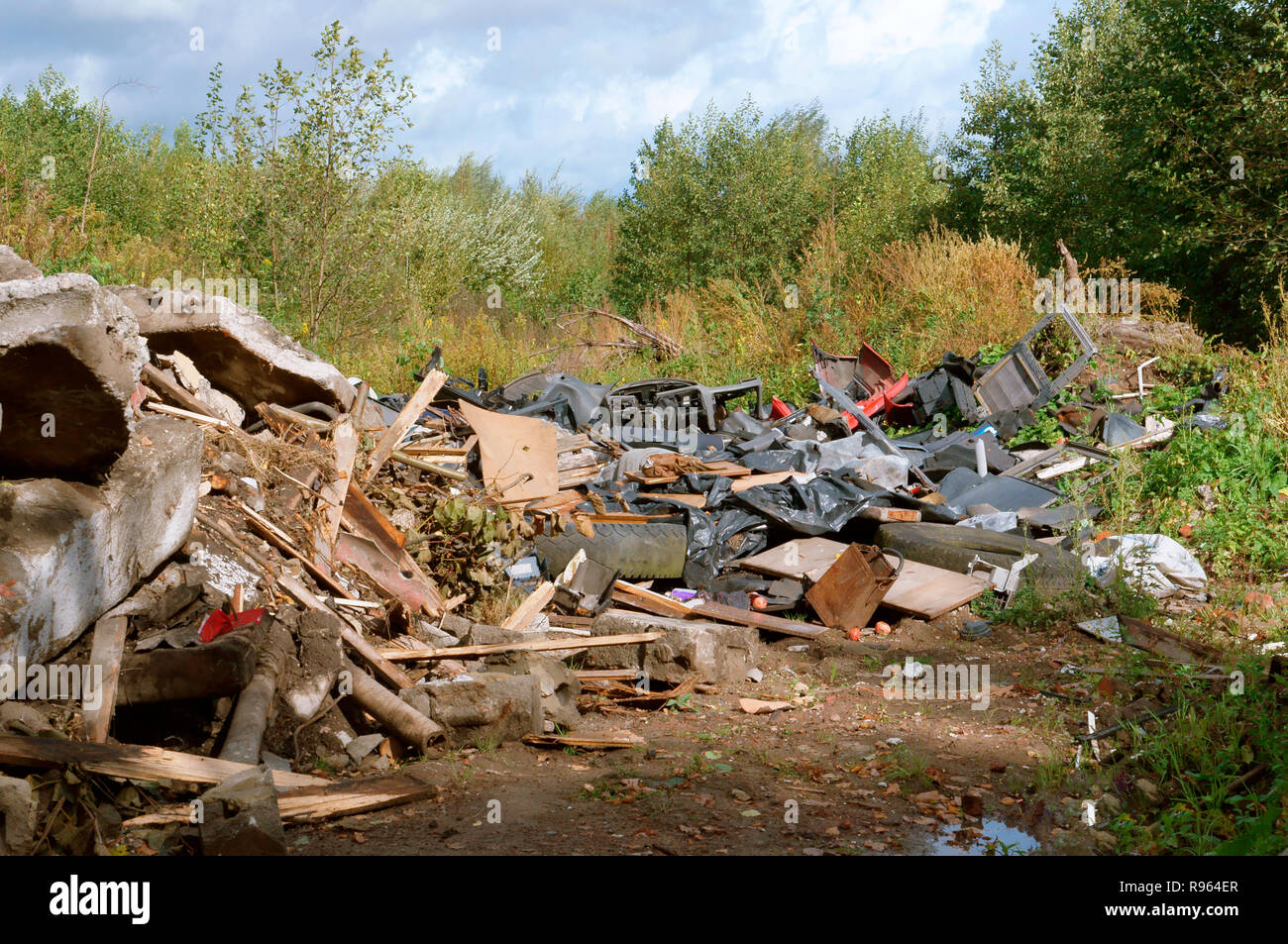 garbage heap in the forest, construction waste in the forest - Stock Image