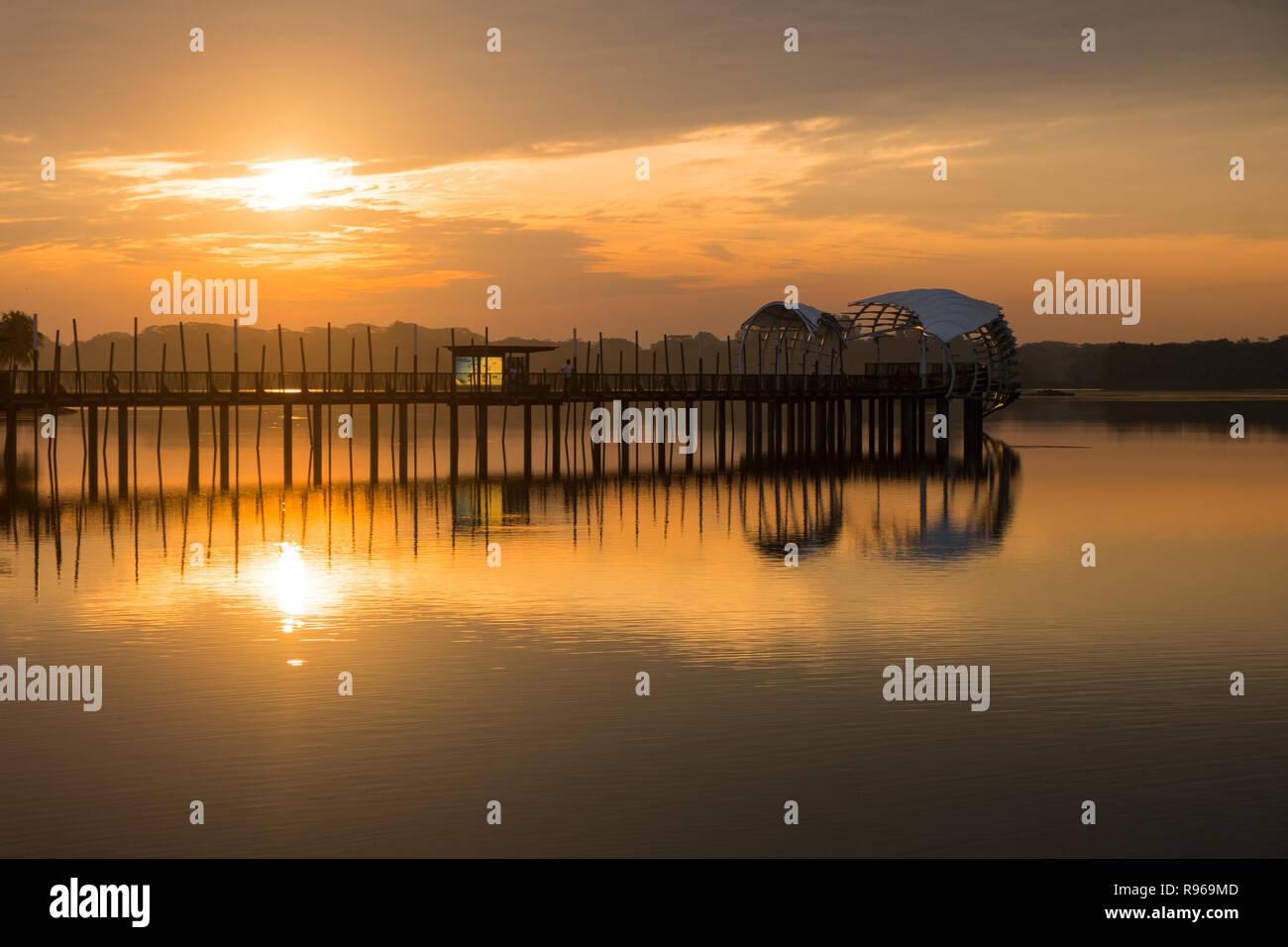 Sunrise at Lower Seletar Reservoir 1 - Stock Image