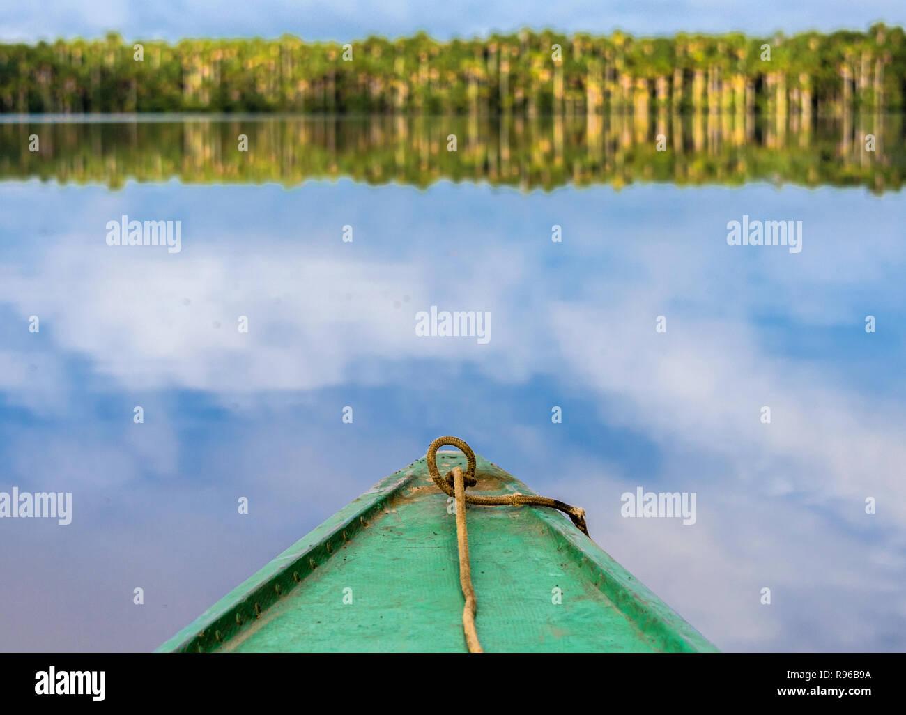 Amazon Dawn - Stock Image