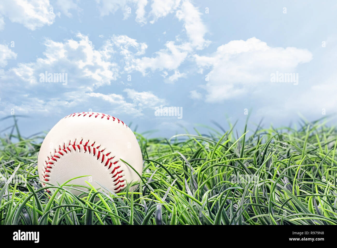 Baseball in lying in the grass on a beautiful summer day. Stock Photo