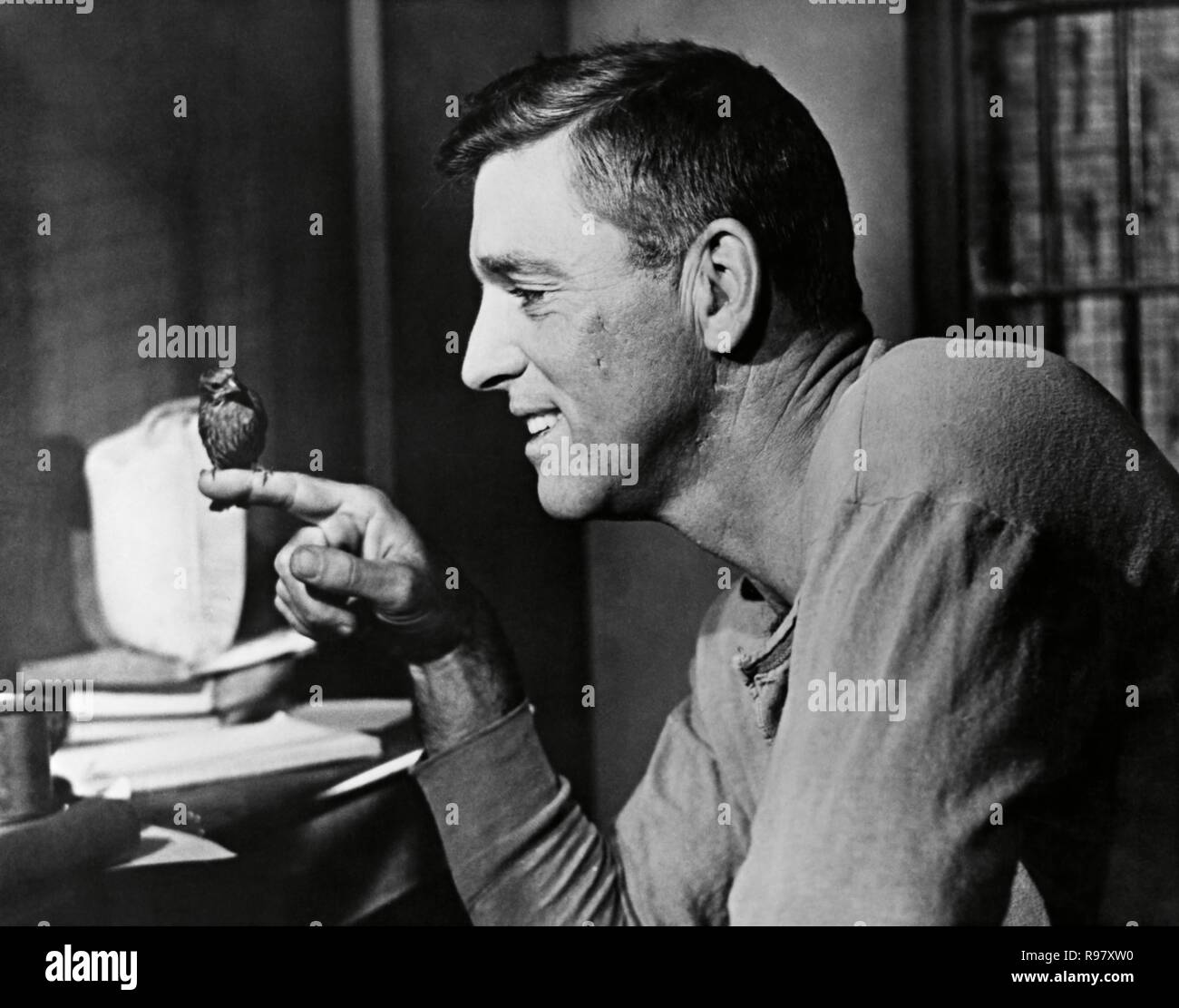 Original film title: BIRDMAN OF ALCATRAZ. English title: BIRDMAN OF ALCATRAZ. Year: 1962. Director: JOHN FRANKENHEIMER. Stars: BURT LANCASTER. Credit: UNITED ARTISTS / Album Stock Photo
