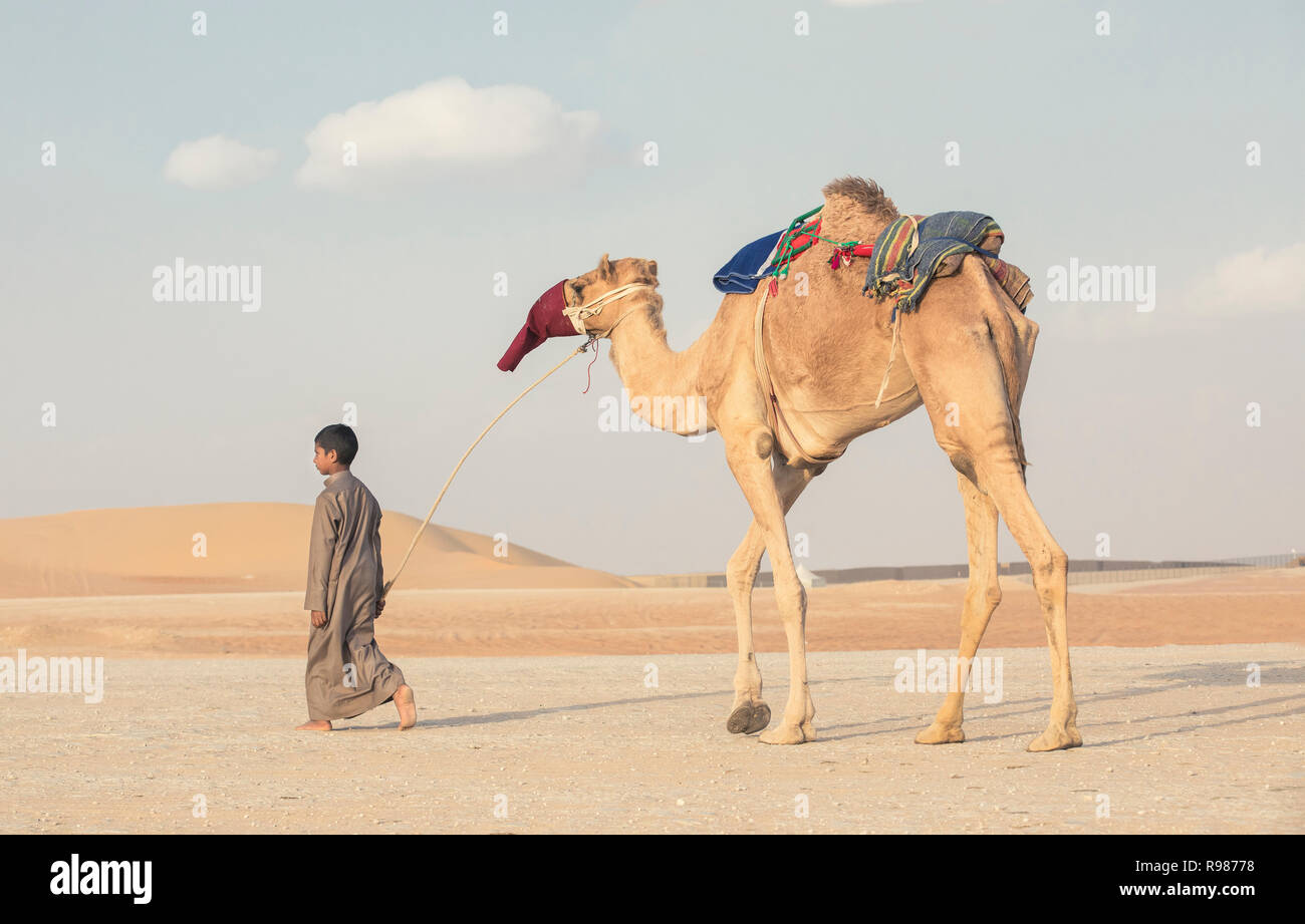Madinat Zayed, United Arab Emirates, December 15th, 2017: barefeet bedouin kid with his camel at The Million Street where camels get bought and sold - Stock Image
