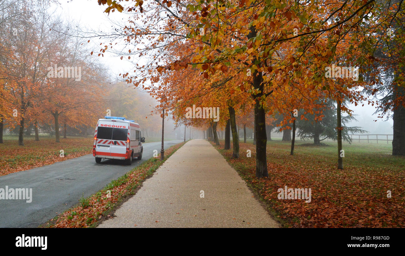 Emergency ambulance on a country road with autumnal fog Stock Photo