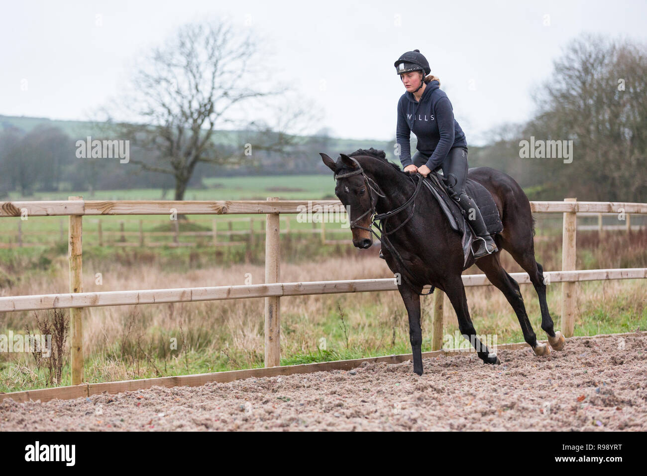 Woman rider exercising a horse at a racing stables in the countryside - Stock Image