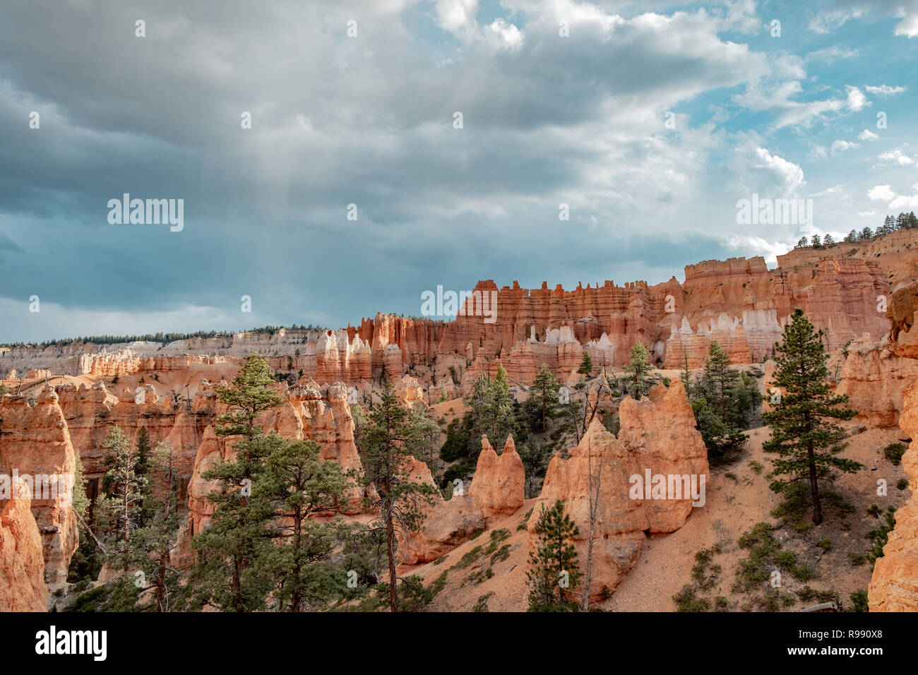 Spire shaped rock formations known as hoodoos at Bryce Canyon National Park in Utah, USA - Stock Image