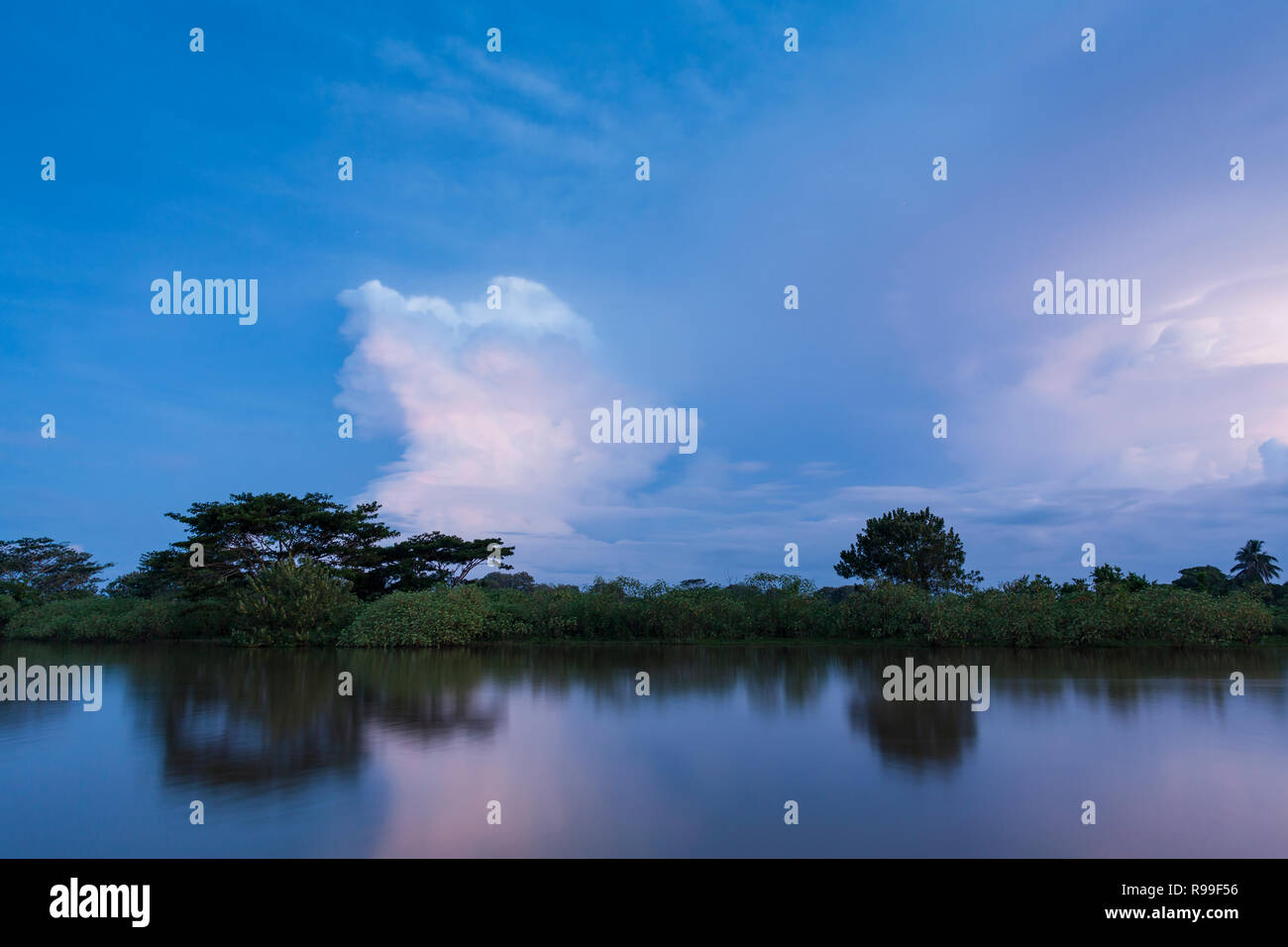 View of Caño Negro Wildlife Refuge with stormy clouds at dusk. Alajuela province. Costa Rica. Stock Photo