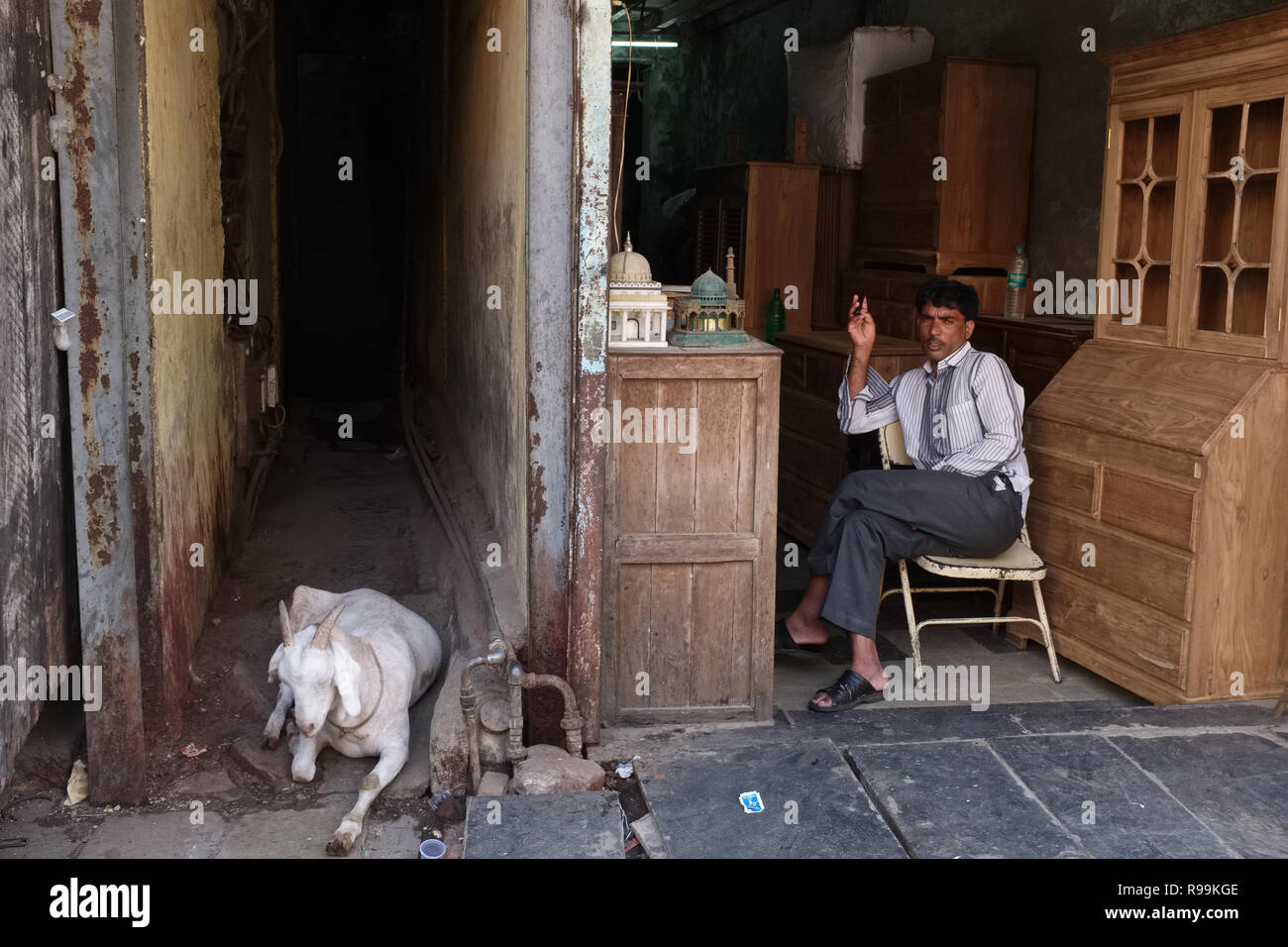 A furniture vendor in Thieves' Market or Chor Bazar in Mumbai, India, a goat kept for its meat resting nearby - Stock Image