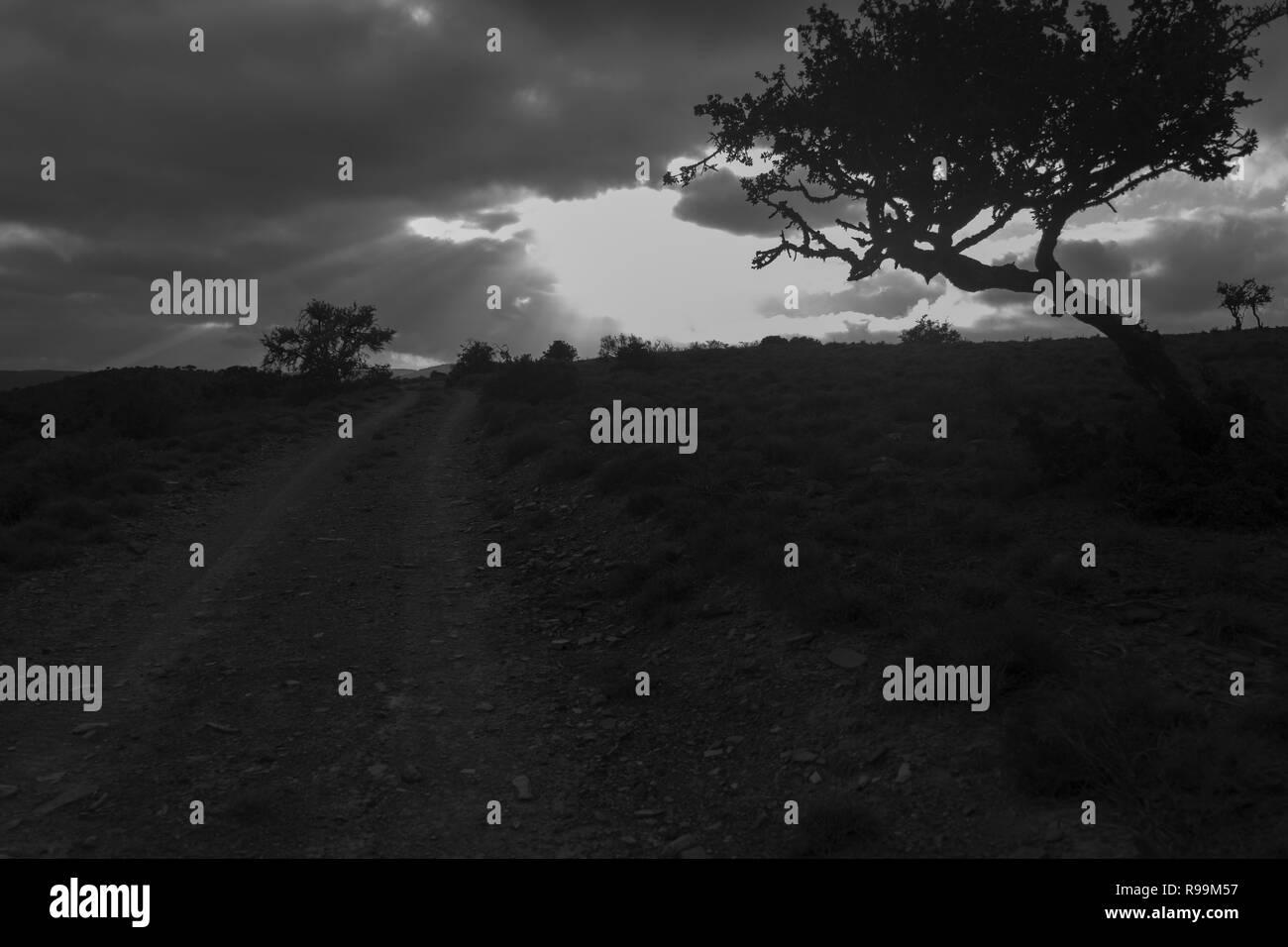 Karoo light rays - Stock Image