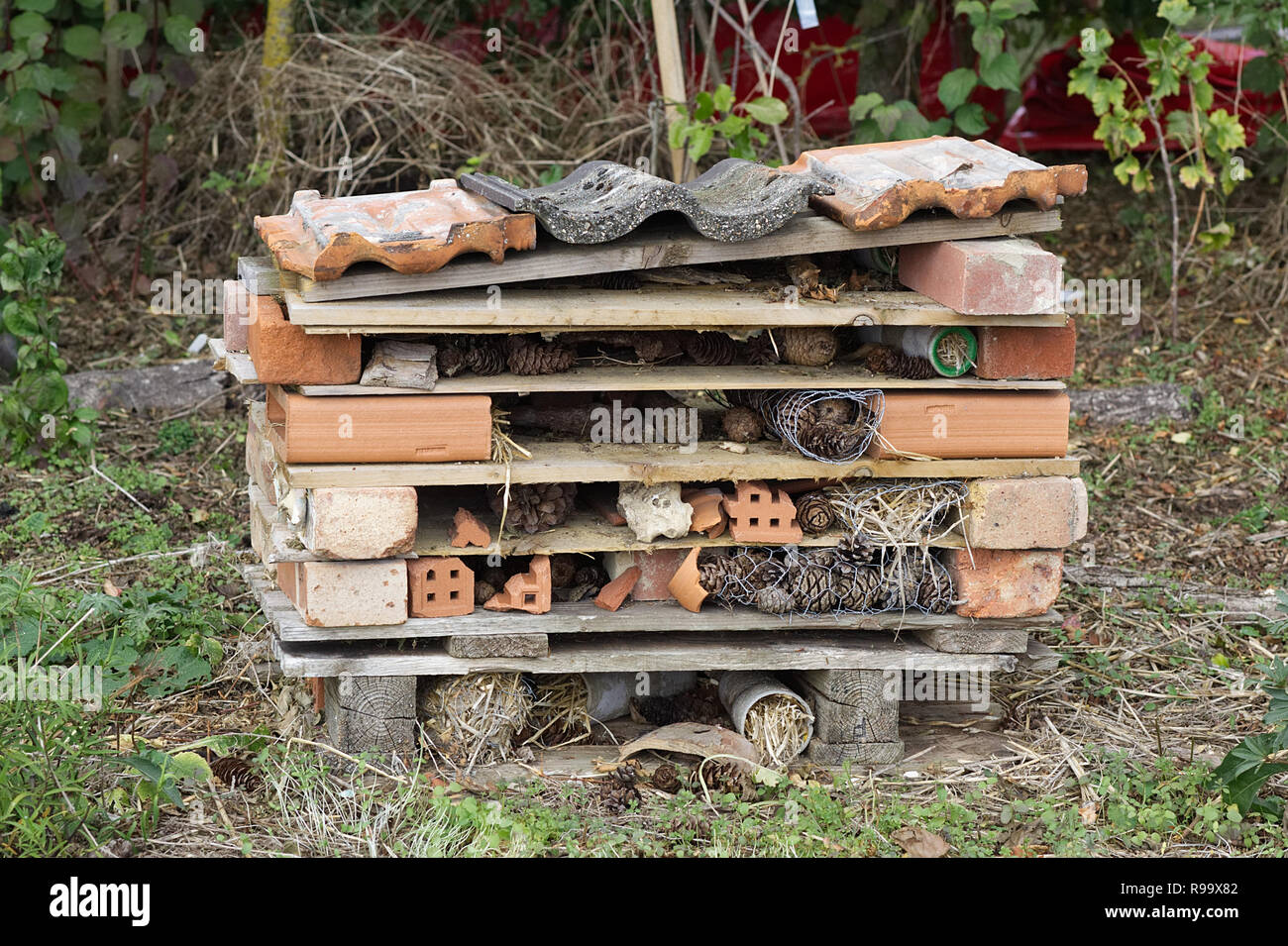 Insect house built from pallets and bricks and recyclable materials - Stock Image