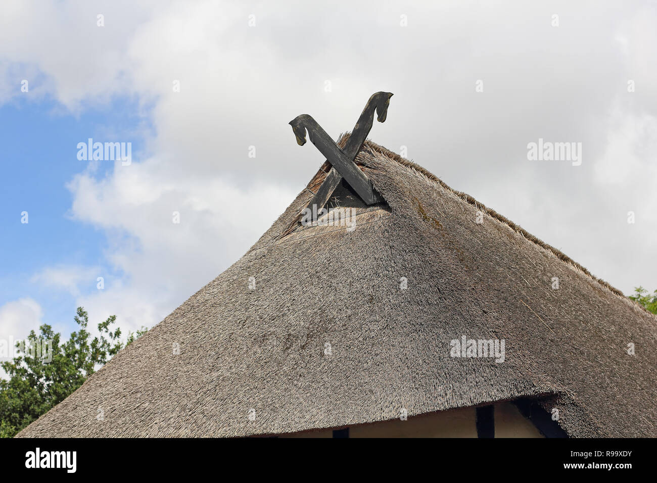 Gable with horse-heads in North Germany - Stock Image