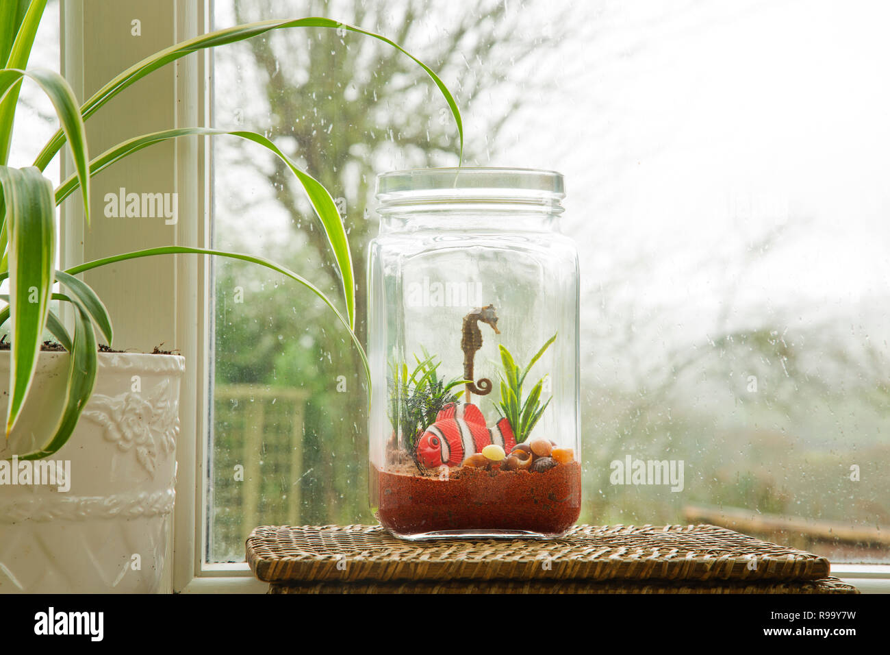 Mini aquarium made with old glass jars - Stock Image