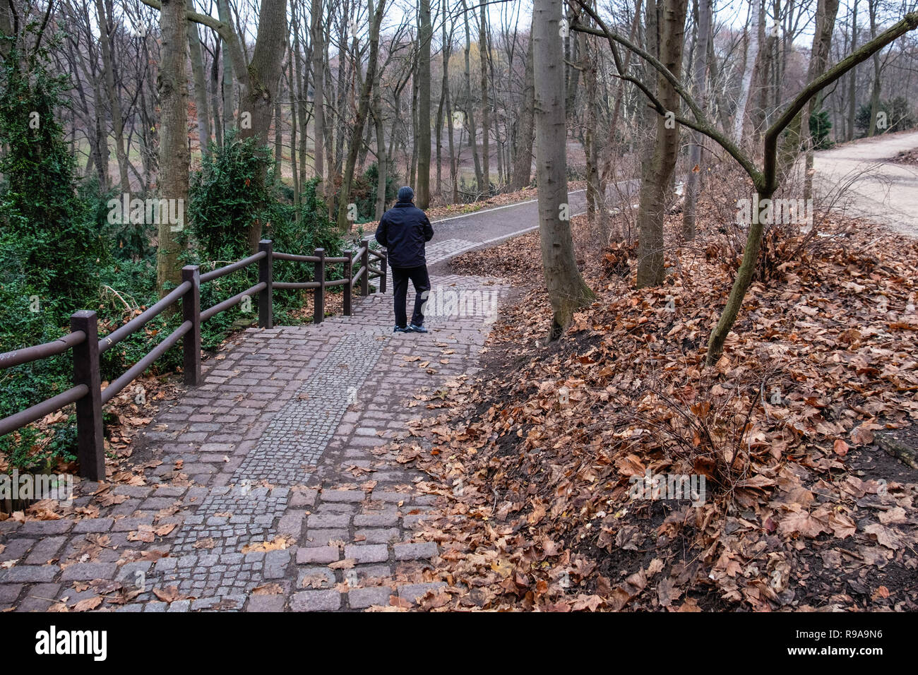 Berlin Volkspark Humboldthain public park, Young man walking, in winter, - Stock Image