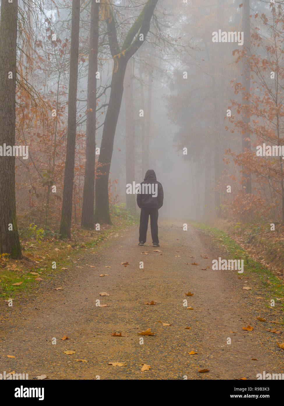 Man in the forest in fog depressions - Stock Image