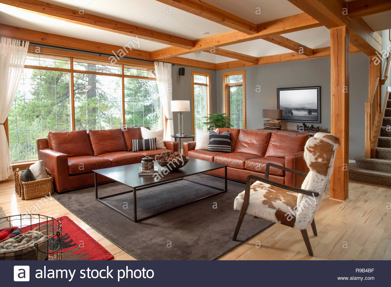 Home showcase interior living room with leather sofas and ...