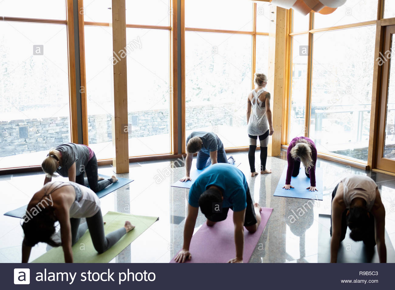 Instructor leading yoga class practicing cat pose in studio - Stock Image