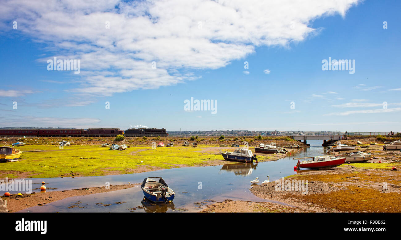Steam train heading down the Exe Estuary at Cockwood Harbour, Devon, England, UK. - Stock Image