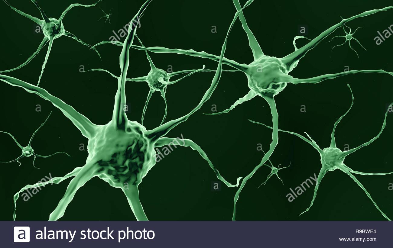illustration of neuron cells - Stock Image