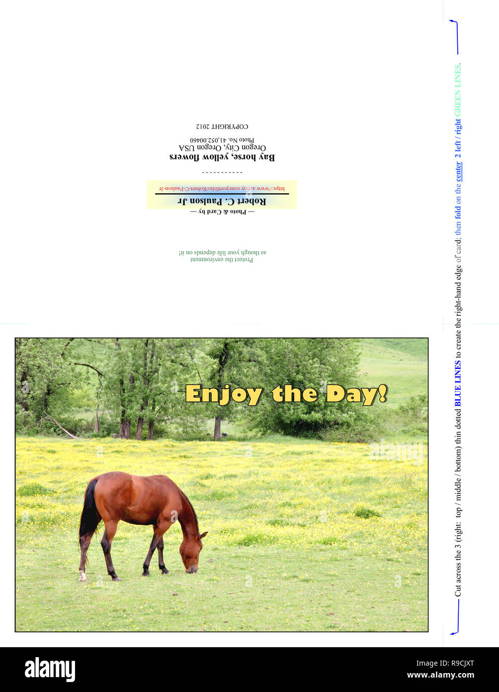 41,052.00460 Greeting Card, Enjoy the Day (print cut fold for 7x5 photo), brown horse, yellow flowers green pasture, trees bkgr, slight hill & valley - Stock Image
