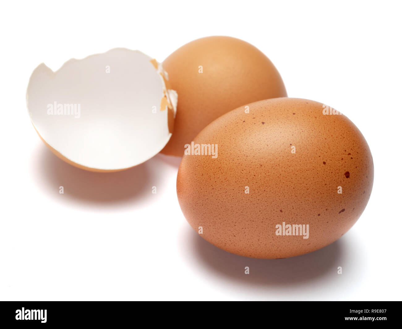 brown chicken eggs closeup isolated on white background - Stock Image