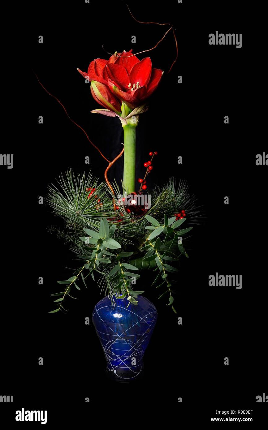 Einzelne Blume in eine Blauen Vase - Stock Image