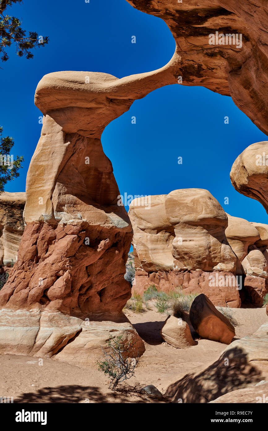 Metate Arch in Devils Garden, Grand Staircase-Escalante National Monument, Utah, USA, North America     Metate Arch in Devils Garden, Grand Staircase- Stock Photo