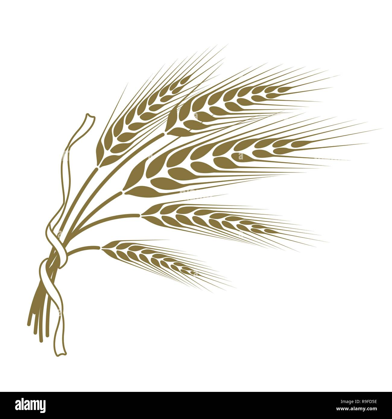 spikelets of wheat tied with a ribbon - Stock Vector