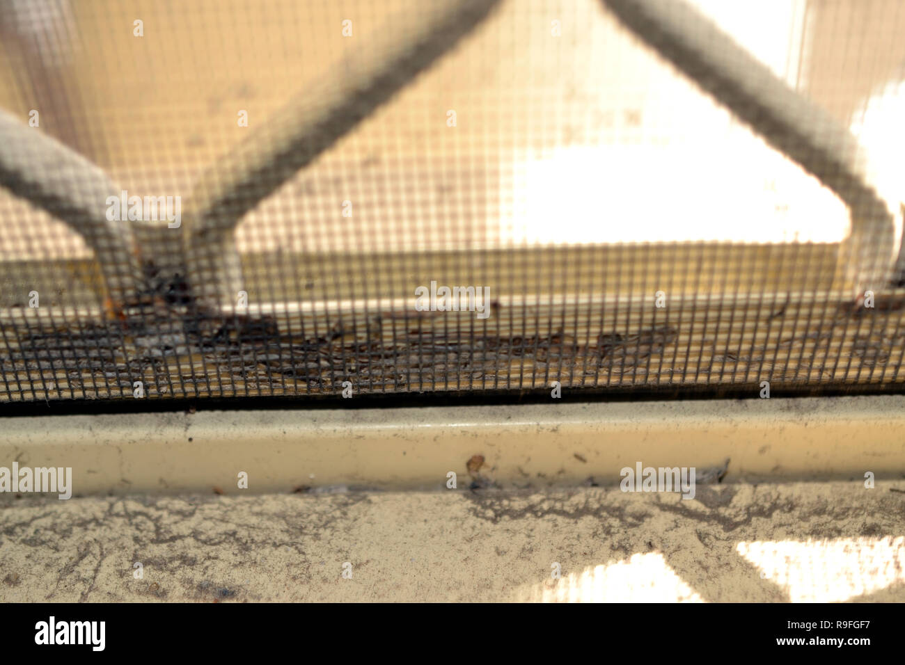 Dusty And Dirty Window Sill Stock Photos Dusty And Dirty Window