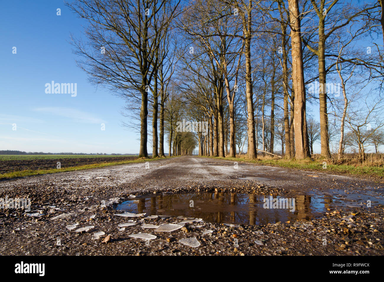 Bad road conditions in winter: frozen puddles in a gravel road - Stock Image