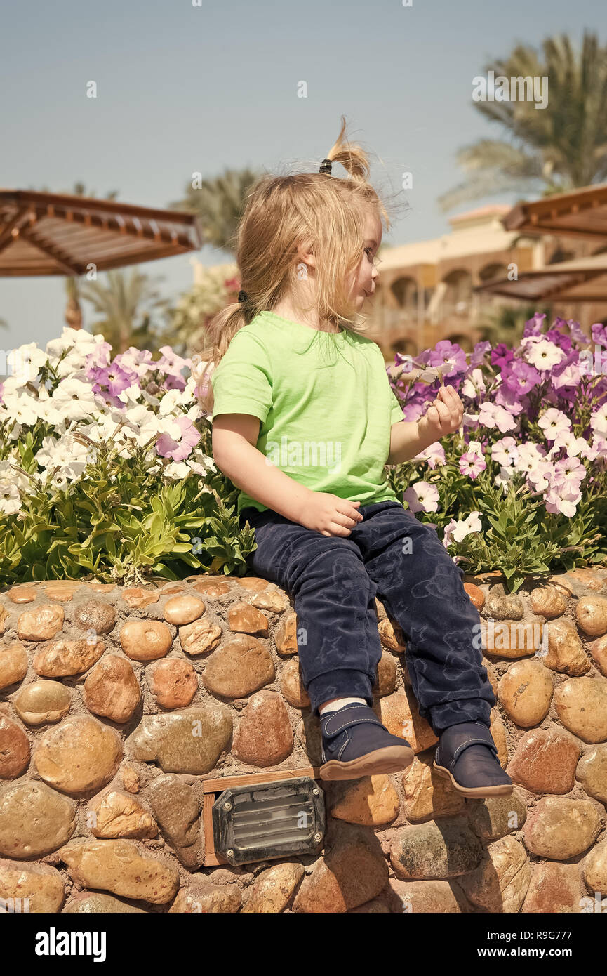 Future, flourishing, blossom. Child pick flowers in flowerbed on sunny day. Germination, growth, childhood. Summer vacation concept. Boy sit on stone curb on floral environment. - Stock Image