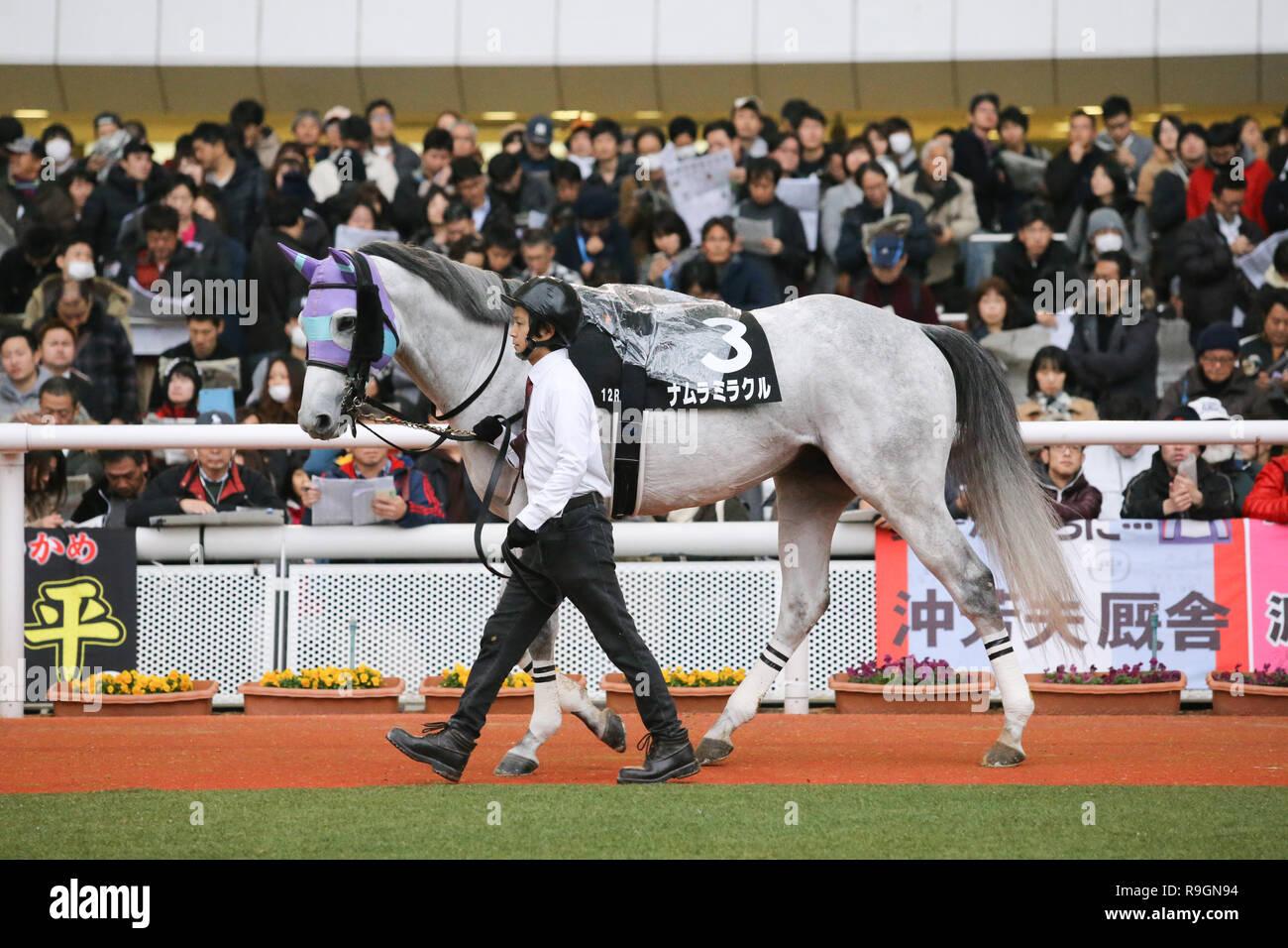 Hyogo Japan 23rd Dec 2018 Namura Miracle Horse Racing Namura