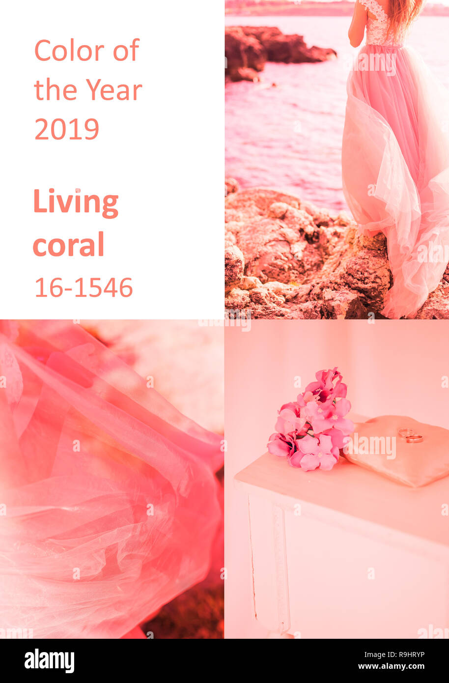 Color of the Year 2019 Living Coral inscription. New trends, collage of photos of coral shade - Stock Image
