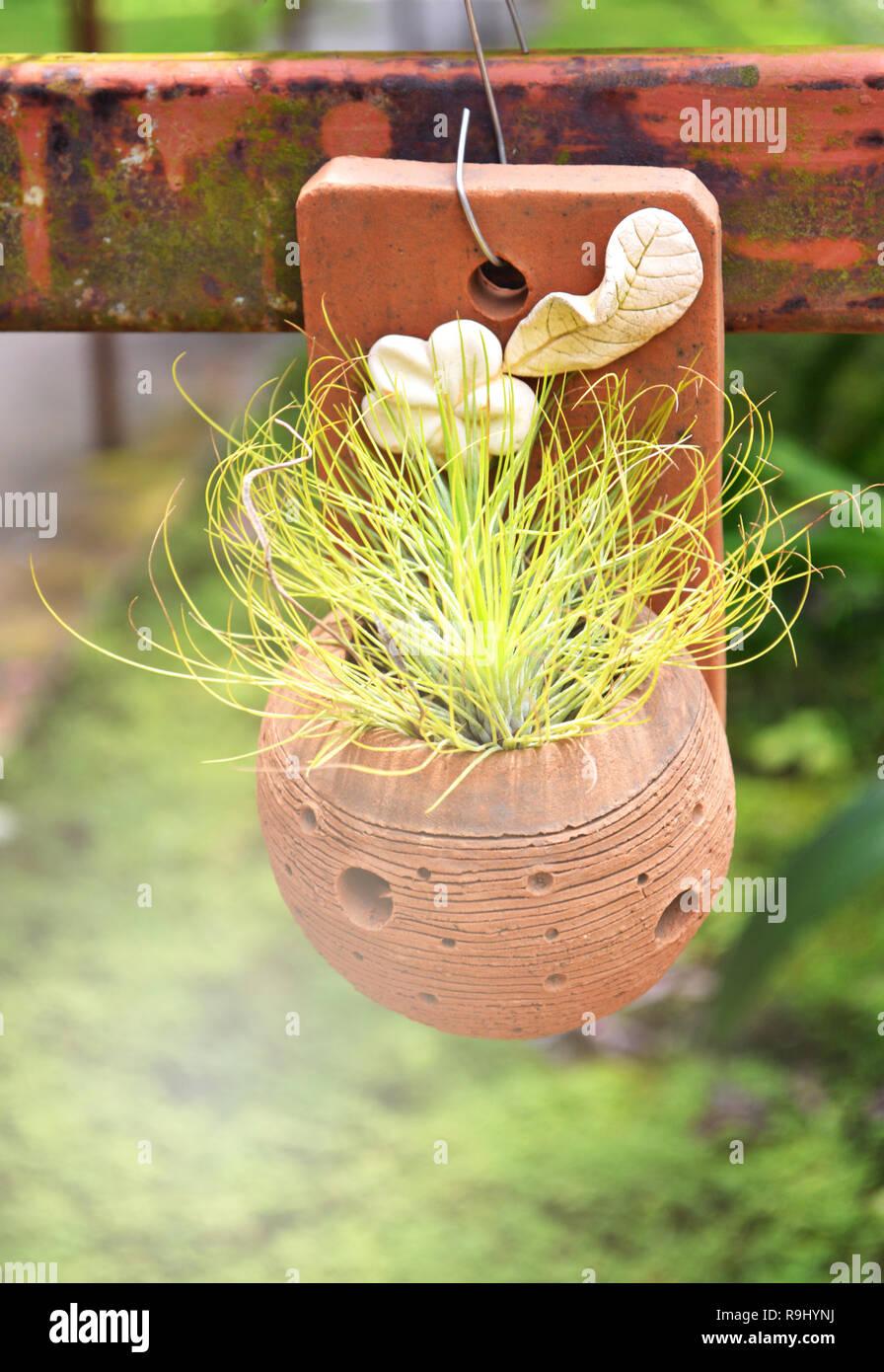 Decoration Petit Pot De Fleur upside down flower pot stock photos & upside down flower pot