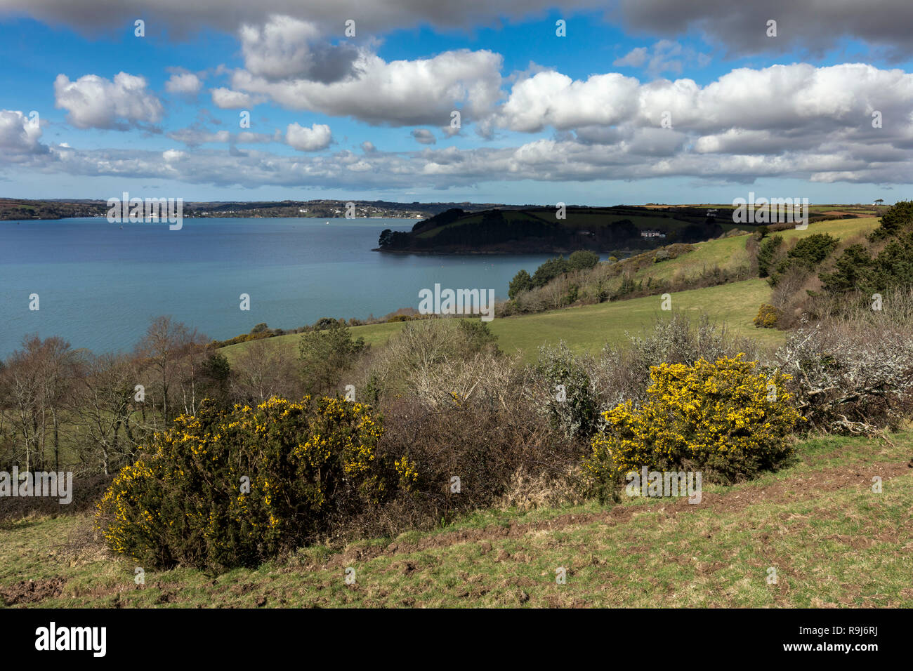 Carrick Roads; from near St Just; Roseland; Cornwall; UK - Stock Image