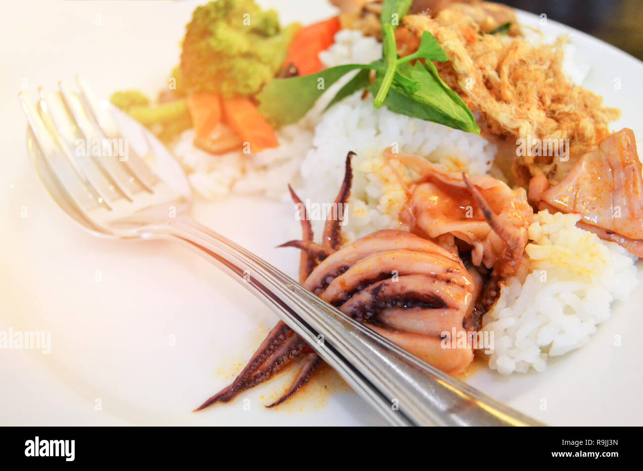 Breakfast stir fried squid with mixed vegetable carrot mushroom and broccoli on rice white plate - Stock Image