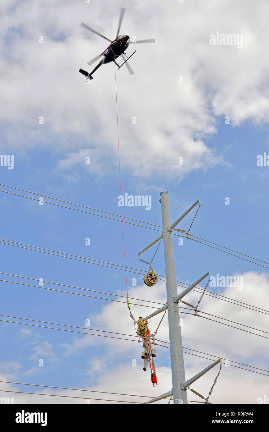 Electrical Tower Workers - Stock Image