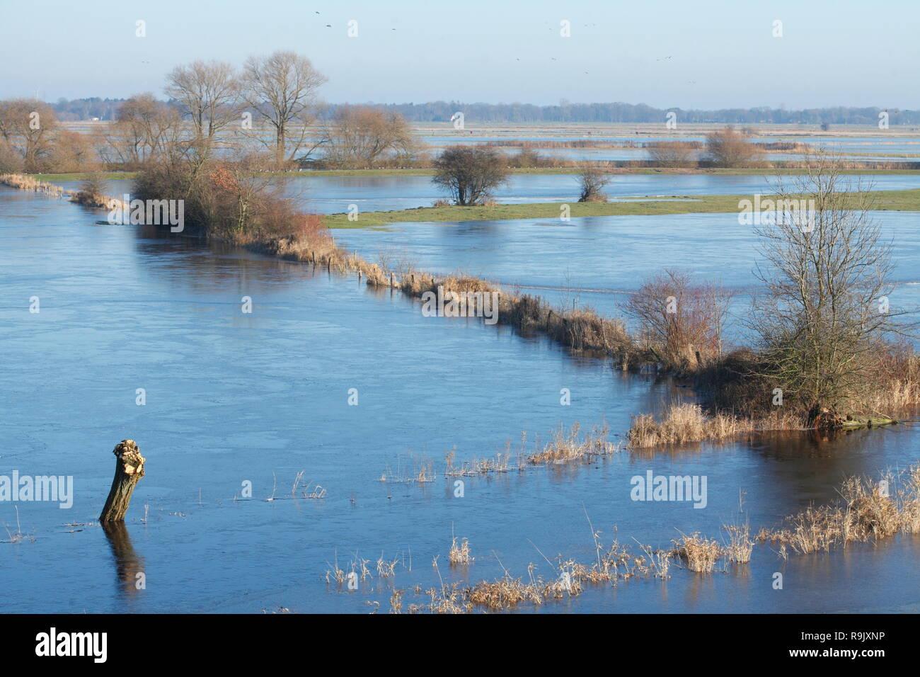 The flooded Wümmewiesen in Bremen-Borgfelld at flood, Bremen, Germany, Europe I Die  überfluteten Wümmewiesen in Bremen-Borgfelld bei Hochwasser, Brem - Stock Image