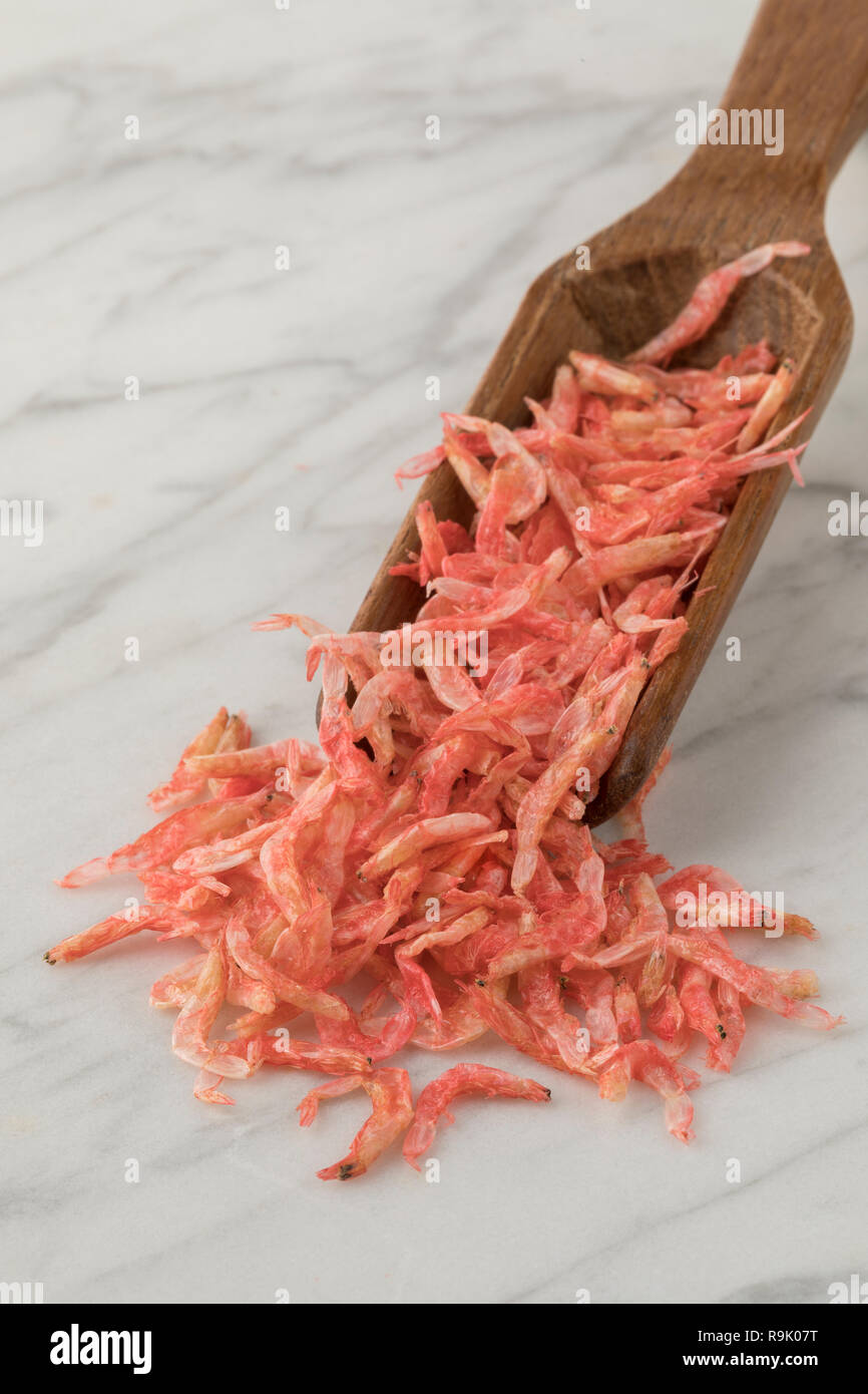 Traditional Japanese Sakura-ebi, dried small pink shrimps on a wooden spoon - Stock Image