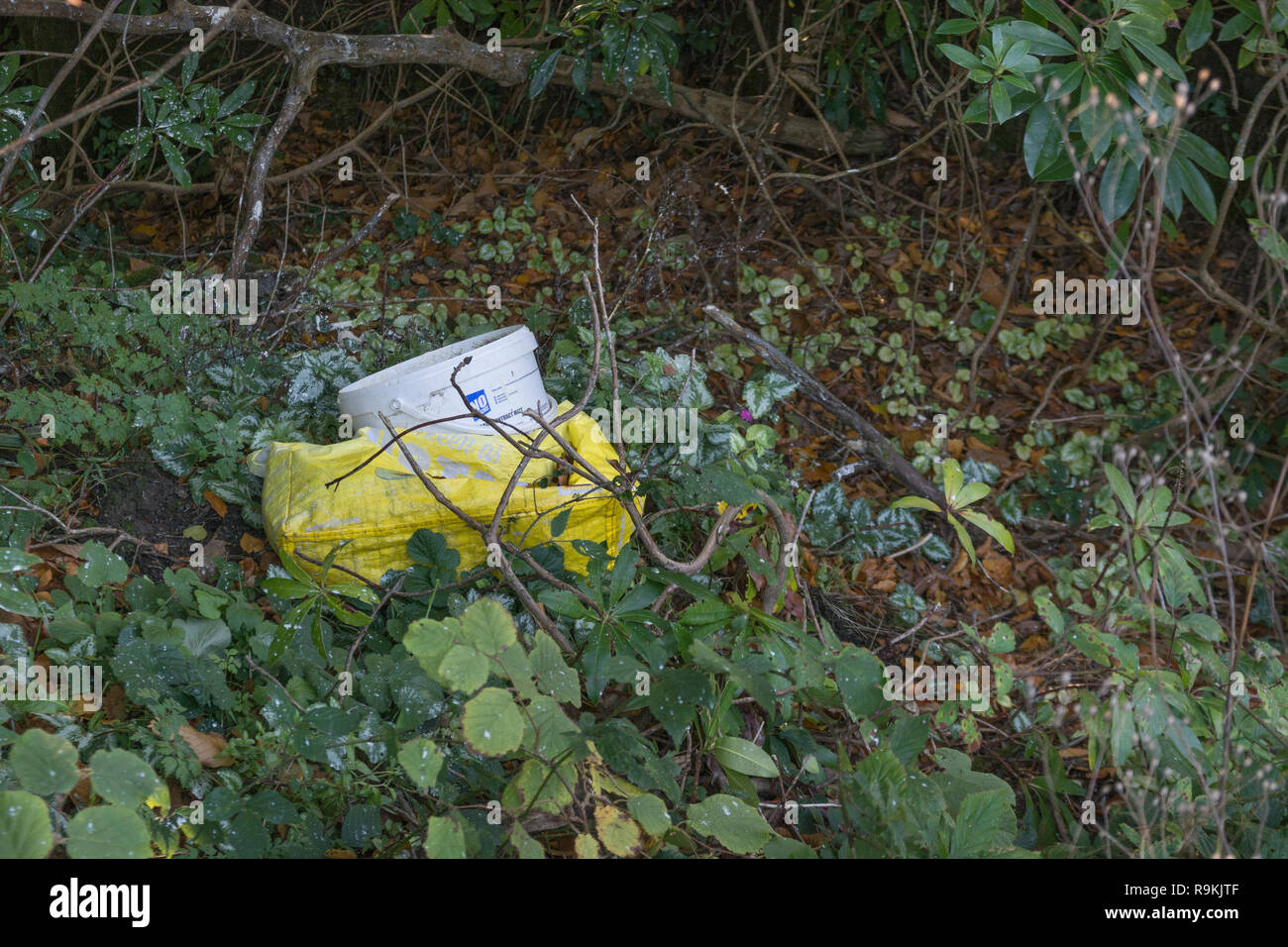 Plastic decorating gear discarded in rural hedgerow. Metaphor on war on plastic, plastic pollution, plastic rubbish. Stock Photo