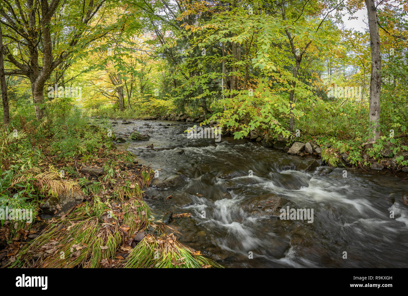 Thundering Brook Trail, Green Mountain National Forest, Woodstock, VT - Stock Image