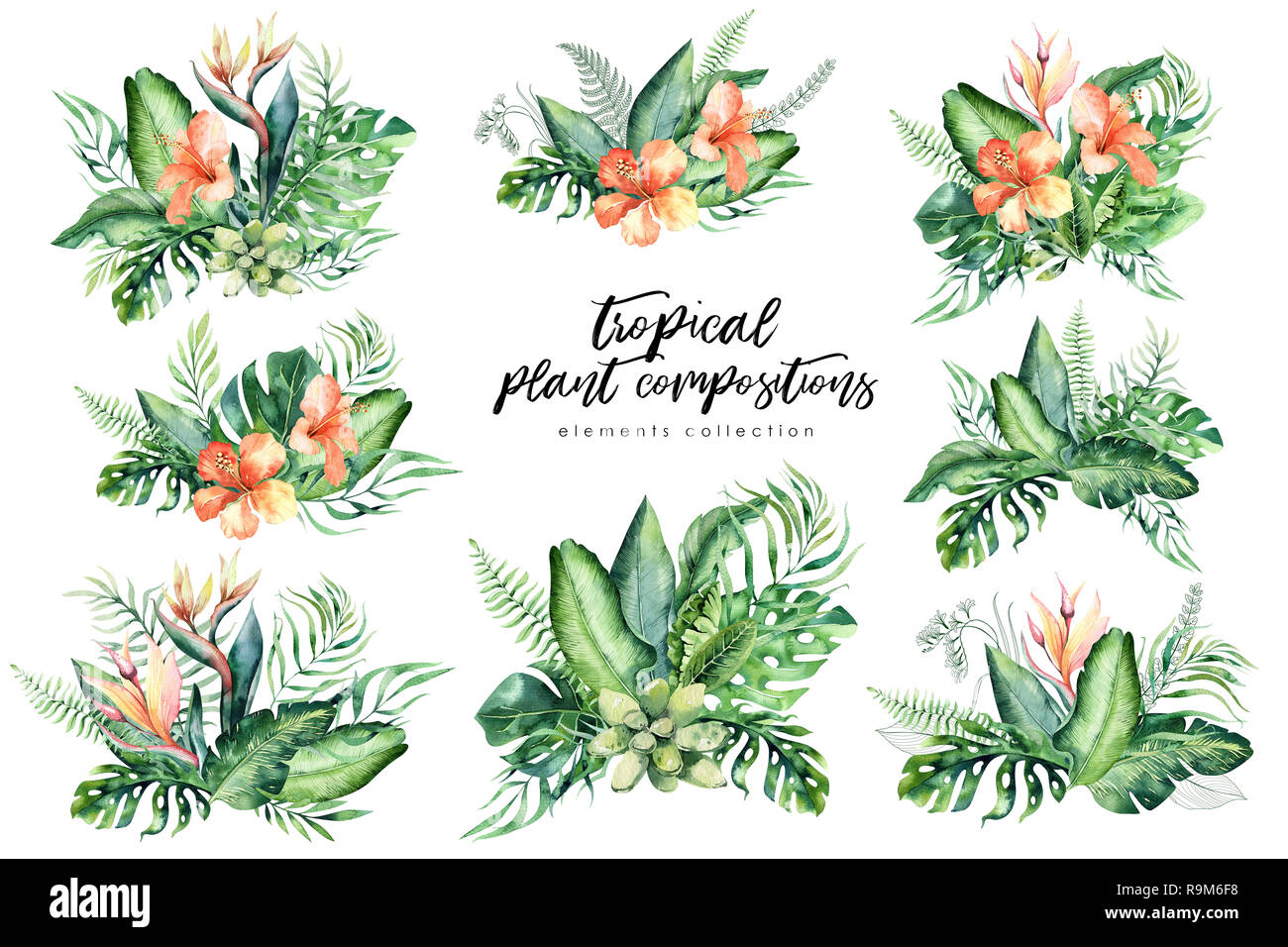 Hand Drawn Watercolor Tropical Flower Bouquets Exotic Palm Leaves Jungle Tree Brazil Tropic Botany Elements And Flowers Perfect For Fabric Design Stock Photo Alamy