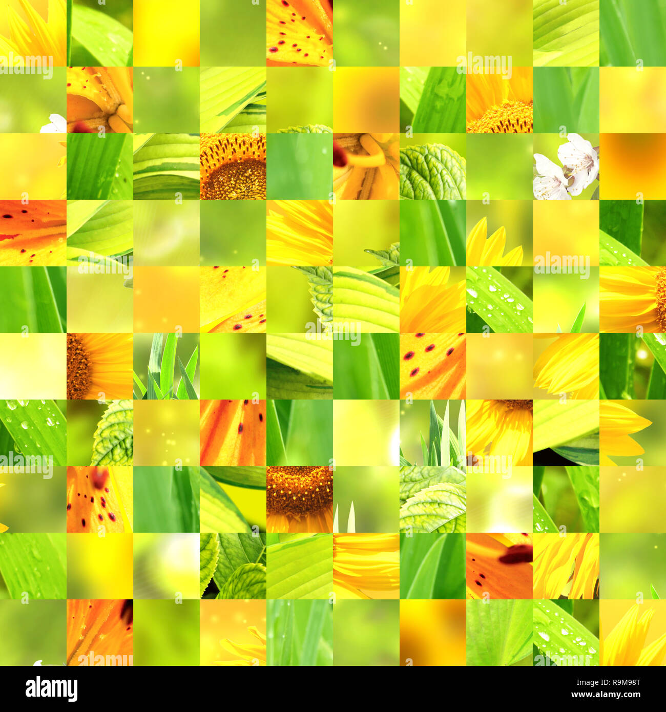 Seamless Background With Sunflower Patterns Of Green Yellow Orange