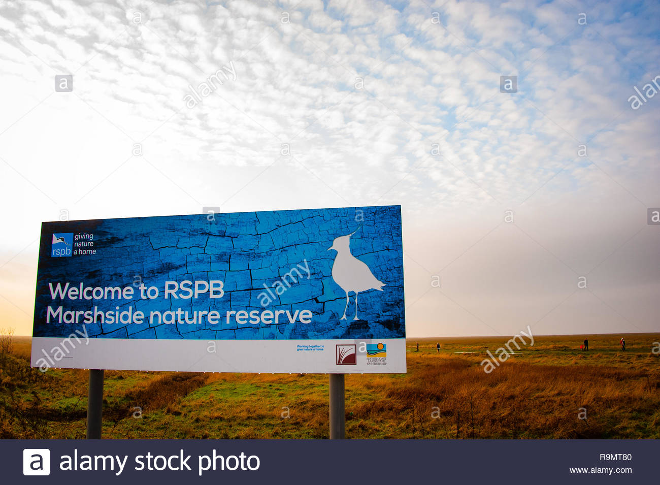 "RSPB Marshside Nature Reserve ""Welcome to RSPB Marshside"" sign in Southport, the light starts to fade at the end of a winters day on Merseyside, Lancashire, England UK Credit: Christopher Canty Photography/Alamy Live News Stock Photo"