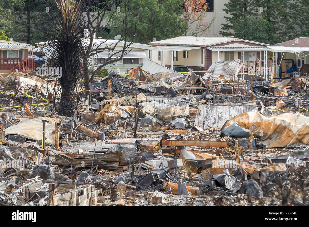 Sacrifice - These images were captured in neighborhoods near Santa Rosa, California, where wildfires in early October 2017. - Stock Image