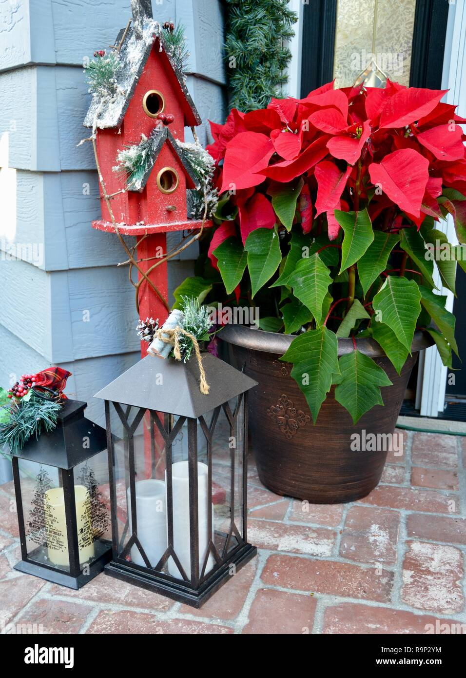 Festive winter holiday decorations welcome guests with traditional Christmas-themed elements, such as poinsettias, a red birdhouse and lanterns. - Stock Image